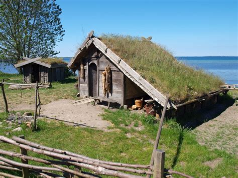 shieldmaiden a viking settlement