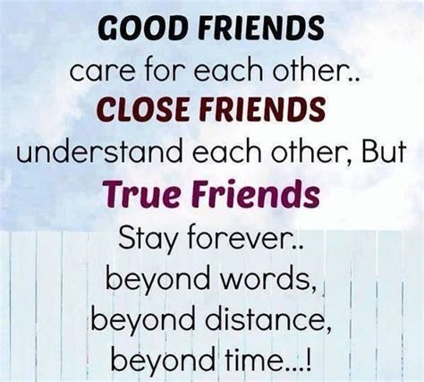 quotes about friends 40 best friendship quotes for true friends