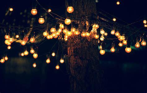 tree lights on tumblr