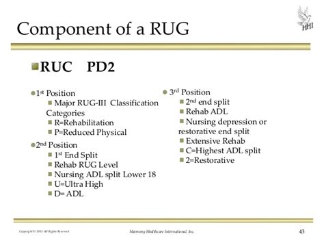 Rehab Rug Levels by Therapy Rug Levels Roselawnlutheran