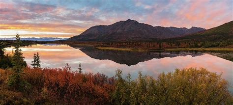 alaska colors alaska fall colors photograph by slone