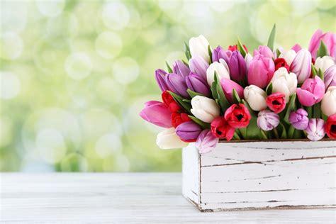 fiori per la festa della mamma i fiori per la festa della mamma la cucina italiana