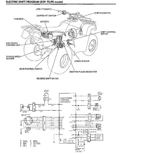 honda 350 rancher wiring diagram the knownledge