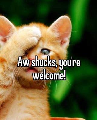 Aww Thank You Meme - aw shucks thank you
