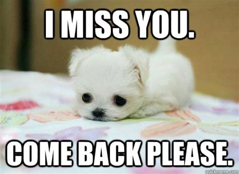 i miss you puppy i miss you come back puppy graphic