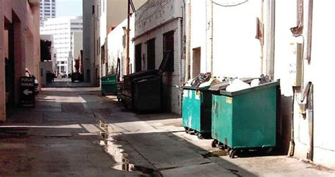 On Dumpster Diving Essay by On Dumpster Diving Essay
