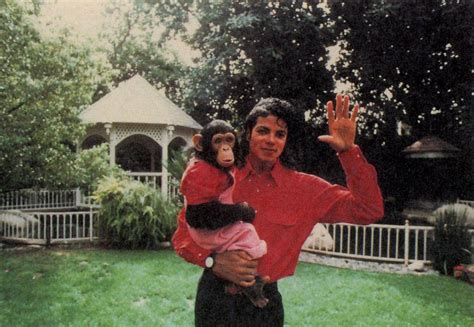 Michael Jackson Bedroom Photos mj upbeat learn some major facts about michael jackson