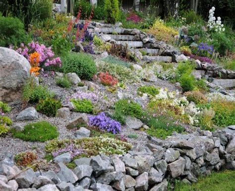 steingarten ideen ideen gestaltung steingarten vorgarten new garten ideen