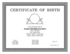 pet certificate templates for dogs cats horses and other