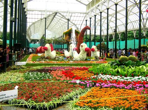Indian Flower Garden The Best 5 Flower Gardens Of India Fnp
