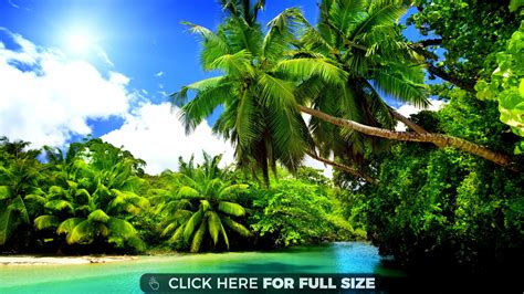 4k desktop wallpaper 5 jpg nature wallpaper cool wallpapers tropical nature 4k wallpaper