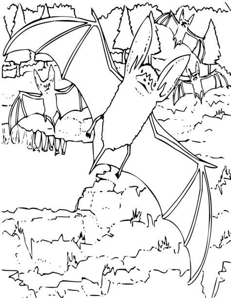 bat coloring pages preschool bat color pages coloring home