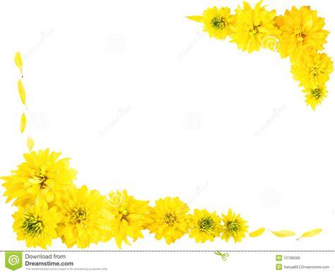 cornici strane pagina con i fiori gialli fotografia stock immagine di