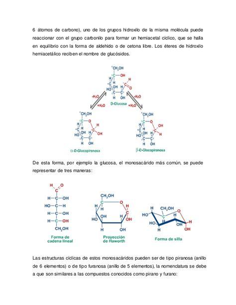 cadenas abiertas formulaci 243 n de cadenas abiertas de los hidratos de carbono