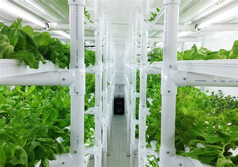 cropbox hydroponic shipping container farm inhabitat
