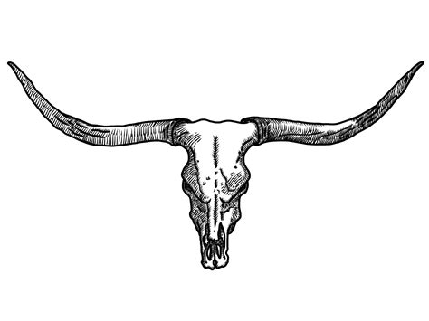 tribal longhorn tattoo 2013 02 11 00 12 31 0000 png 2048 215 1536