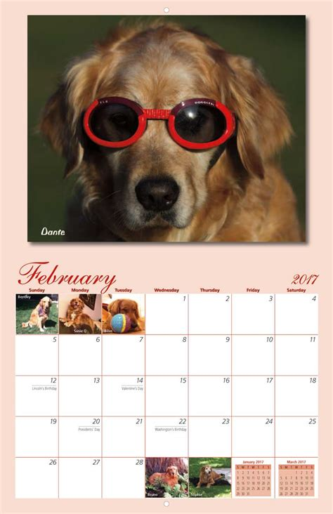 homeward bound golden retriever rescue inc golden retriever rescue calendar yearbox calendars