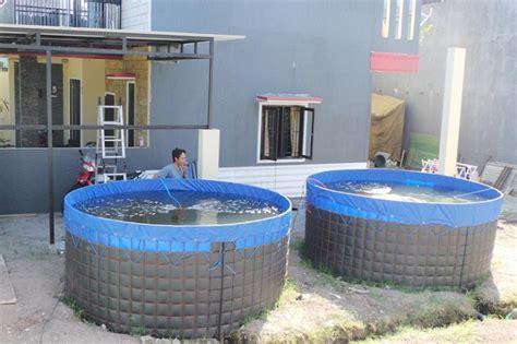 Harga Kolam Terpal Untuk Lele langkah membuat kolam terpal bundar untuk budidaya ikan