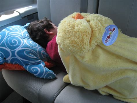 Pillow Pet Blankets by Pillow Pets Review Plus Blankets Slippers And More