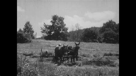 lets get off our high horses full time travel isnt the united states 1940s farmer sitting on cart pulled by