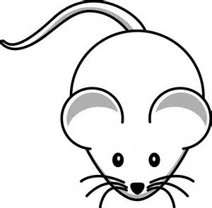 mouse colors mouse coloring pages coloring page