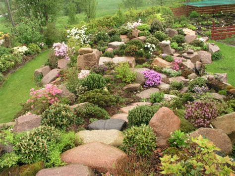 Rock Garden Bed Ideas Rockery Plants Rock Garden Ideas For Filling In Areas In Back Yard Flower Beds Garden