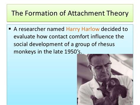 Harry Harlow Contact Comfort by Attachment Theory Developmental Psychology