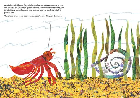 libro una casa para cangrejo una casa para cangrejo ermita 241 o a house for hermit crab book by eric carle official
