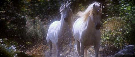 film fantasy unicorni caroline mcfarlane watts don t give up your day dream