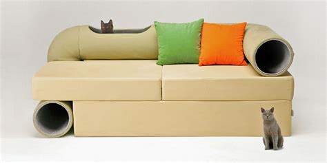 couch with cat tunnel cat friendly furniture ideas purrfect love