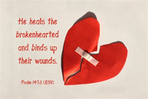 he heals the brokenhearted living and loving after rejection books bible verses archives the christian vegan