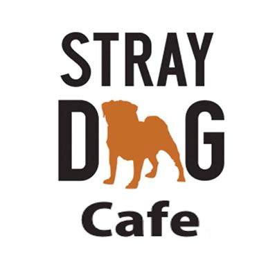 stray cafe akron all restaurant coupons deals specials oh newest