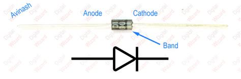 terminals of a diode diodes introduction practical electronics tutorials digital wizard