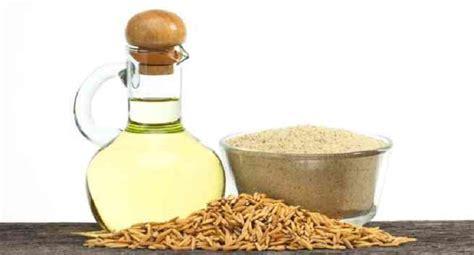Minyak Tawon Yang Besar 3 jenis minyak yang harus ada dalam diet penderita diabetes okezone lifestyle
