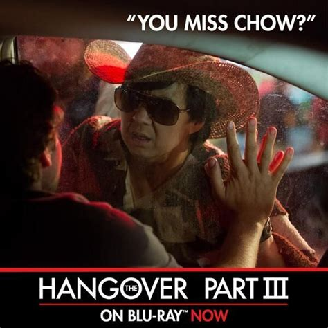 Mr Chow Meme - 20 best images about mr chow on pinterest mr chow my
