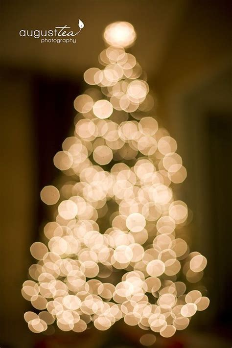 christmas light photography tips 38 best images about holiday photography tips on pinterest