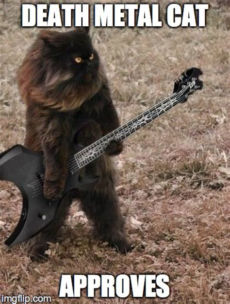 Death Meme - death metal meme google search metal pinterest