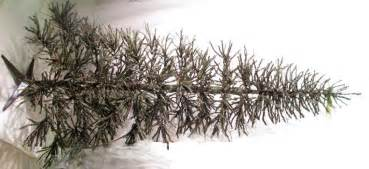artificial christmas tree quot rustic german twig tree quot 7 ft