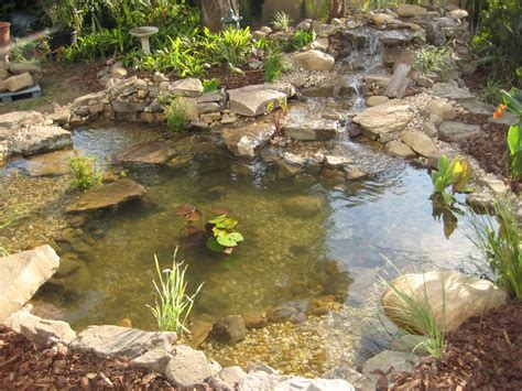 aquascape ecosystem jim s pond pondtastic water gardens of orlando installs