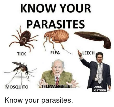 Knowyour Meme - know your parasites flea leech tick gelist mosquito joel