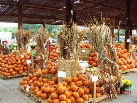 frugal fun fort worth weekend events oct 1 3 texas