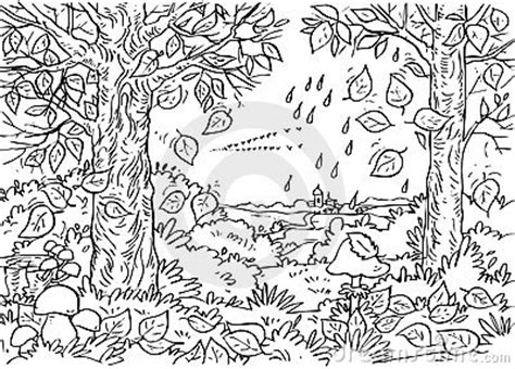 forest background coloring page forest in autumn royalty free stock photos image 14961468