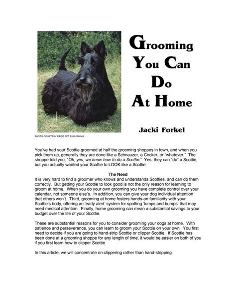 different ways to groom a scottish terrier yes i groom our scotties and yes i care what they