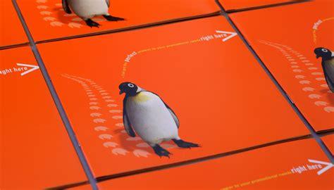 penguin picture books sales brochure design penguin books toop studio