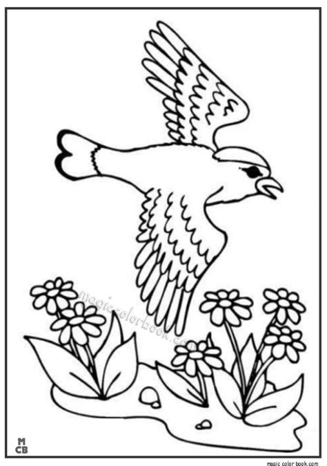 spring bird coloring pages freecoloring4u com