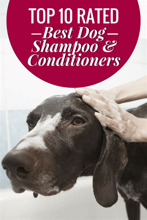 best shoo and conditioner for yorkies shoo and conditioner the top 15 best hypo 100 images top 15 best baby