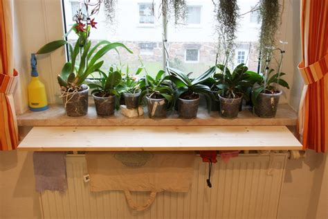 fensterbrett heizung orchideen vor heizungsluft auf fensterbank sch 252 tzen