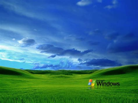 hot themes for windows xp windows grass wallpapers gallery 66 plus juegosrev com