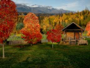 cabin wallpapers pictures images