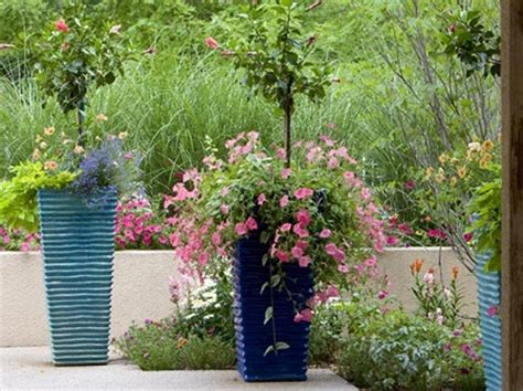 container gardening colorado 5 container gardening mistakes to avoid this winter